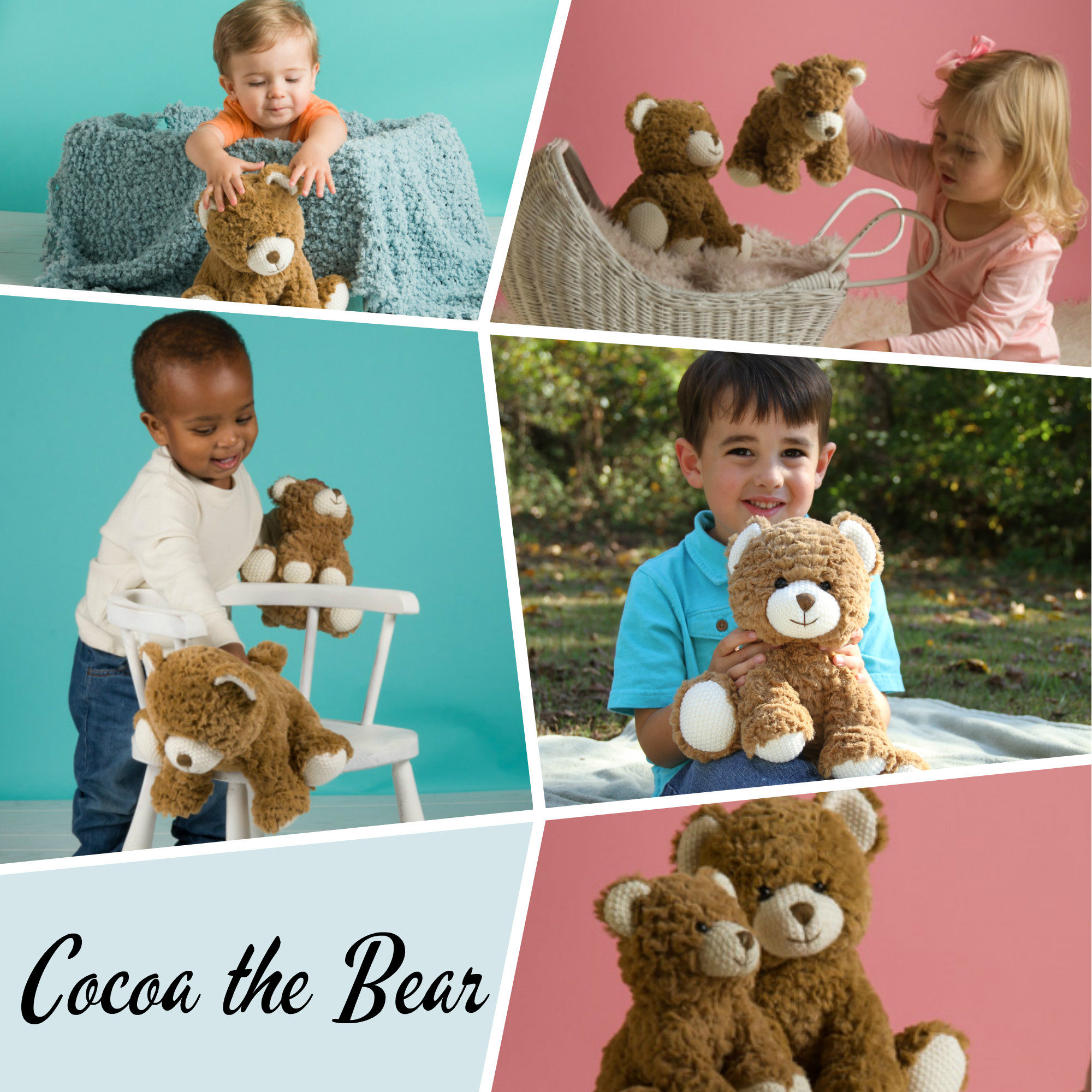 Cocoa the Bear