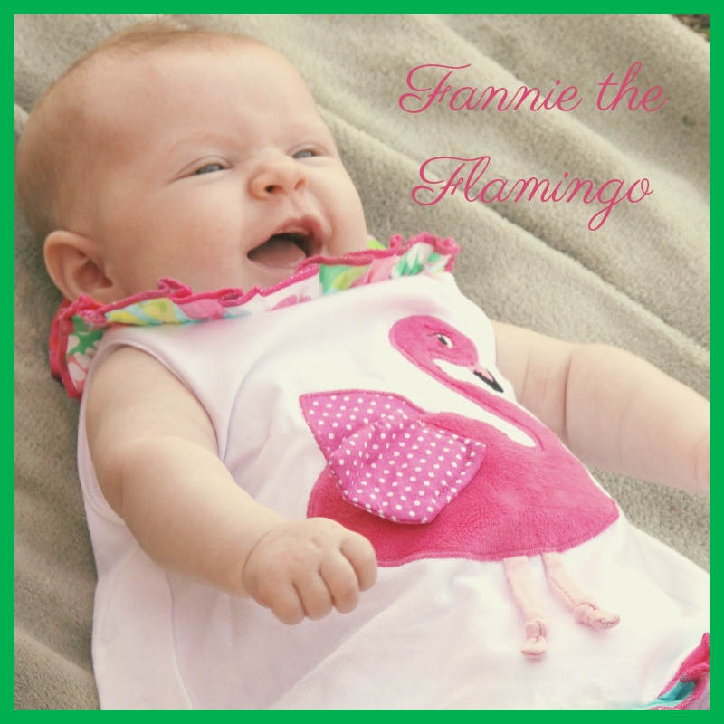 Fannie the Flamingo
