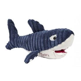 Bruce the Shark Tooth Fairy
